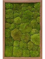 Machový obraz s dreveným rámom MERANTI, 40x60cm