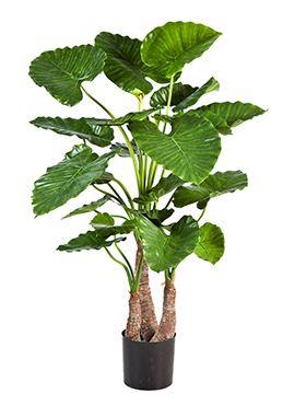 Umelá rastlina alocasia calidora tuft V120 cm
