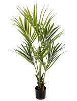 Umelá palma kentia V172cm