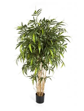 Umelý bambus (new natural bamboo tree) V180 cm