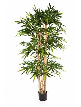 Umelý bambus (bamboo giant) V300 cm