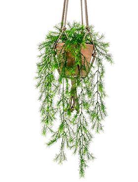 Umelá rastlina asparagus v závesnom terakotovom kvetináči, 80 cm