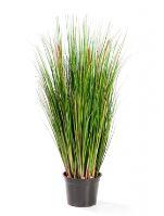 Umelá tráva (foxtail grass green) V90 cm