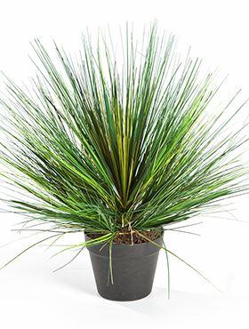 Umelá tráva (grass onion) V70 cm