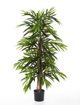 Umelá rastlina longifolia de luxe tree V150 cm, ohňovzdorná
