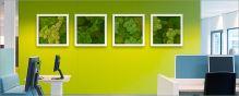 Machový obraz s hrubým kovovým rámom STIEL, 50x50cm, biela (RAL 9010)