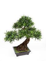 Umelý bonsaj (podocarpus), V80 cm, v ozdobnej miske