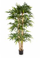 Umelý bambus (new giant bamboo) V150 cm