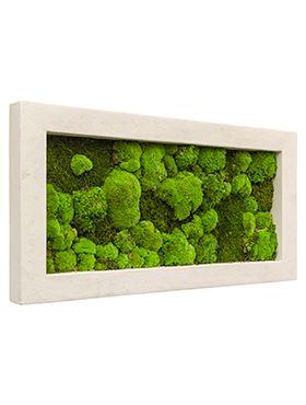 Machový obraz s rámom POLYSTONE Natural, 100x50cm, krémová