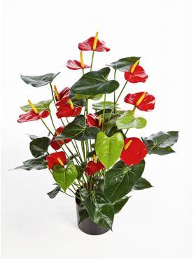 Umelá antúria (anthurium de luxe), červená, V78 cm