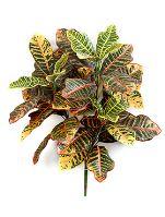 Umelá rastlina croton, trs, V58 cm