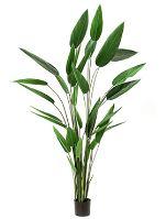 Umelá rastlina heleconia, 32 listov, V220 cm