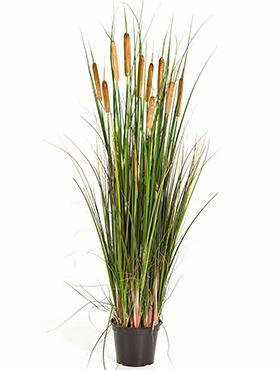 Umelá tráva (cattail grass) V120 cm