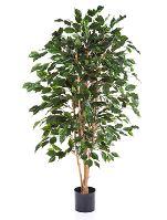 Umelá rastlina ficus exotica V150 cm