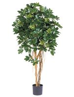 Umelá rastlina schefflera arboricola, V110 cm