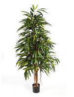 Umelá rastlina longifolia royal natural V210 cm