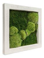 Machový obraz s rámom Polystone natural 50 x 50 cm