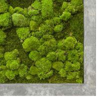 Machový obraz s rámom POLYSTONE Raw grey, 50x50cm, sivá