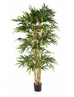Umelý bambus (new giant bamboo) V240 cm