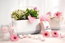 Kvetináč Lechuza Yula ovál (taška na rastliny) all-in-one set