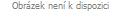 Kvetináč SHELL bowl