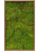 Machový obraz s dreveným rámom MERANTI, 60x100cm
