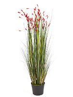 Umelá tráva (grass coral) V120 cm