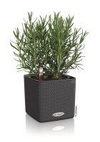 Samozavlažovací kvetináč Lechuza Cube Color 14 granitová/čiernosivá
