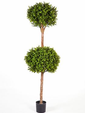 Umelý buxus tvarovaný do 2 guličiek (boxwood double ball tree) V165 cm
