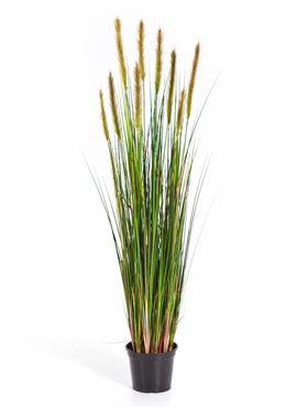Umelá tráva (grass foxtail w/green fl) V90 cm
