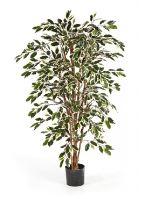 Umelá rastlina ficus nitida var. V120 cm