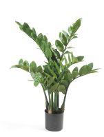 Umelá rastlina zamioculcas (116 listov), V70 cm