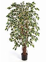 Umelá rastlina ficus liana var. V180 cm